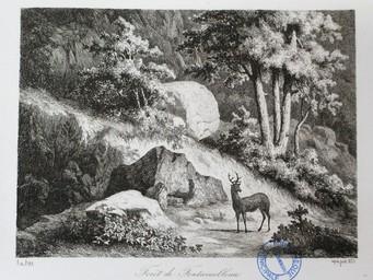 Forêt de Fontainebleau. Aqua forti 1853 : [estampe] / A. de Bar | Bar, Alexandre de (1821 - 1906). Graveur