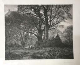 Forêt de Fontainebleau (Salon 1850- 51) : estampe / Karl Bodmer, pinx.   Bodmer, Karl. Artiste